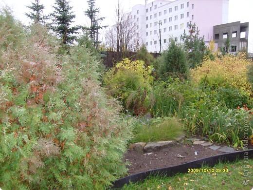 Приглашаю на прогулку по Соликамскому дендропарку......фотографии сняты в 2009 году, осенью.......  из истории :  самый первый Ботанически парк  на Руси  был основан в Соликамске   Г.А. Демидовым...... в нем насчитывалось более 1000 экземпляров........ фото 1