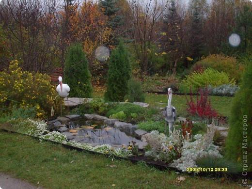 Приглашаю на прогулку по Соликамскому дендропарку......фотографии сняты в 2009 году, осенью.......  из истории :  самый первый Ботанически парк  на Руси  был основан в Соликамске   Г.А. Демидовым...... в нем насчитывалось более 1000 экземпляров........ фото 3
