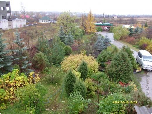 Приглашаю на прогулку по Соликамскому дендропарку......фотографии сняты в 2009 году, осенью.......  из истории :  самый первый Ботанически парк  на Руси  был основан в Соликамске   Г.А. Демидовым...... в нем насчитывалось более 1000 экземпляров........ фото 27