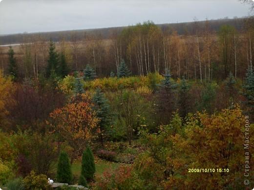 Приглашаю на прогулку по Соликамскому дендропарку......фотографии сняты в 2009 году, осенью.......  из истории :  самый первый Ботанически парк  на Руси  был основан в Соликамске   Г.А. Демидовым...... в нем насчитывалось более 1000 экземпляров........ фото 28