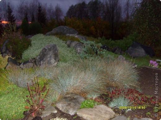 Приглашаю на прогулку по Соликамскому дендропарку......фотографии сняты в 2009 году, осенью.......  из истории :  самый первый Ботанически парк  на Руси  был основан в Соликамске   Г.А. Демидовым...... в нем насчитывалось более 1000 экземпляров........ фото 33