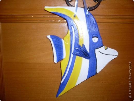 Рыбки повторюшки. извените за качество фото. фото 4