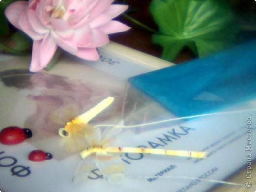Нужно взять рамку, искусственную стрекозу, искусственные лотосы, голубую бумагу, и клей пистолет. фото 1