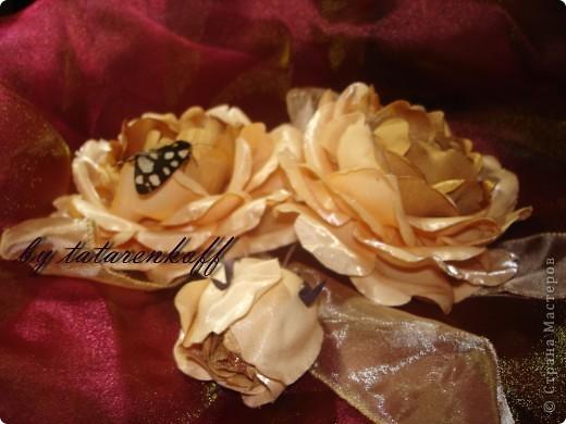 роза Николь фото 6