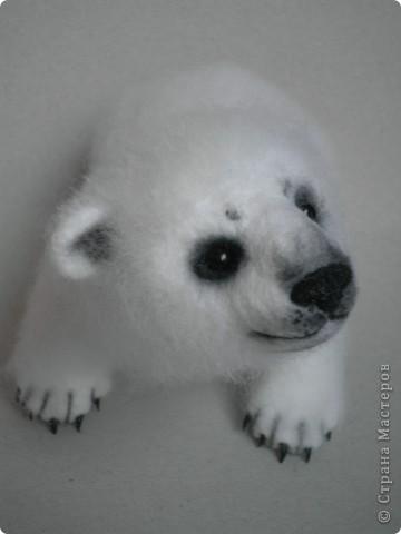 Медвежонок выполнен в технике сухого валяния. Высота 17 см.,длина 15 см. Глазки - стекло, коготки- пластик. фото 5