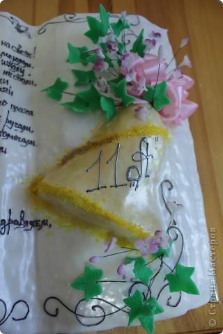 торт книга фото 2