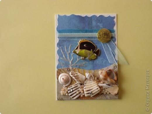 Это, наверное, последняя серия. Хотя... Спасибо Дерябиной Вере- это она прислала мне рыбок, так что она соавтор. фото 2