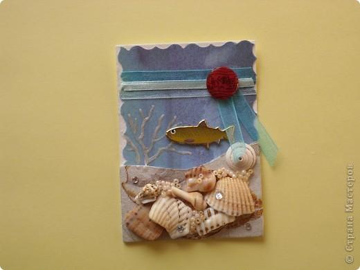 Это, наверное, последняя серия. Хотя... Спасибо Дерябиной Вере- это она прислала мне рыбок, так что она соавтор. фото 4