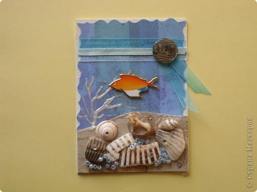 Это, наверное, последняя серия. Хотя... Спасибо Дерябиной Вере- это она прислала мне рыбок, так что она соавтор. фото 6