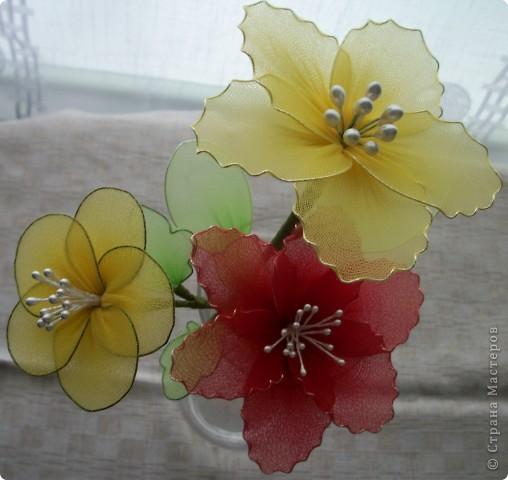 Наконец-то ручки дотянулись и до капрона. Первые капроновые цветы.