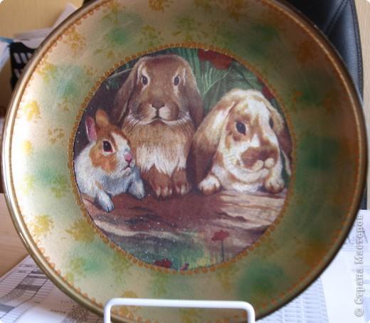 Эта тарелка была сделана в преддверии Нового года. Получились вот такие очень милые зайки.  фото 1
