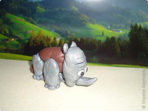 Носорог и панда фото 4