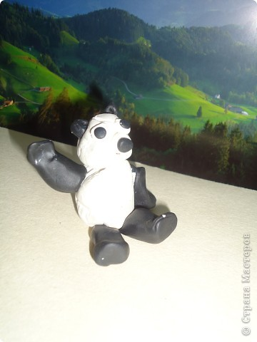 Носорог и панда фото 5