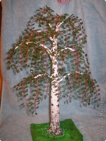 Моё первое дерево фото 9