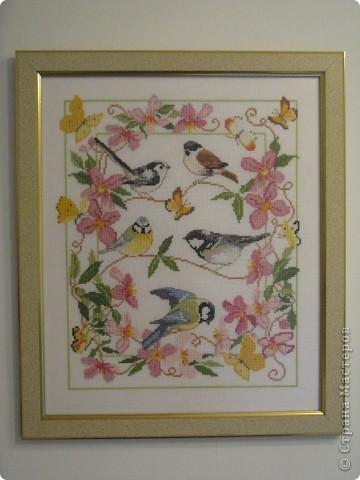 Птички - синички фото 1