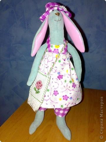 Прошу любить и жаловать - это Зая! Девушка скромная и доброжелательная. Любит стильные сумочки и сладкую морковь.