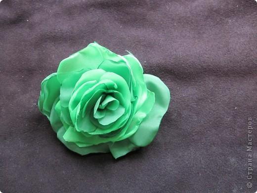 Люблю цветы фото 2