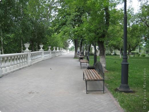 Я обещала вам прогулку по Александровскому саду. Эти цветущие лебеди находятся как раз перед ним. фото 3