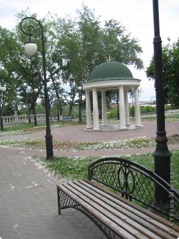 Я обещала вам прогулку по Александровскому саду. Эти цветущие лебеди находятся как раз перед ним. фото 4