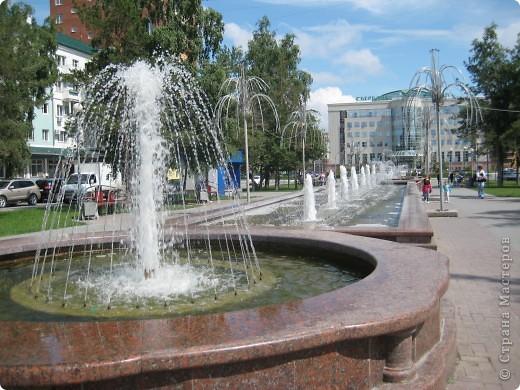 Я обещала вам прогулку по Александровскому саду. Эти цветущие лебеди находятся как раз перед ним. фото 61