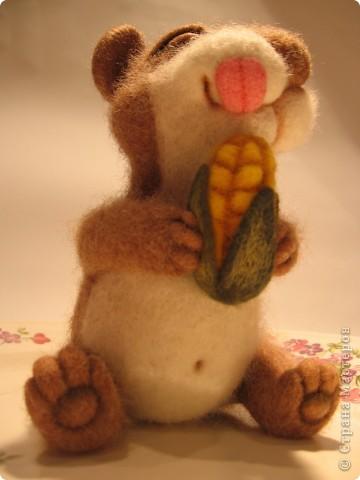 Хомке счастье привалило  - кукурузка хороша! фото 4
