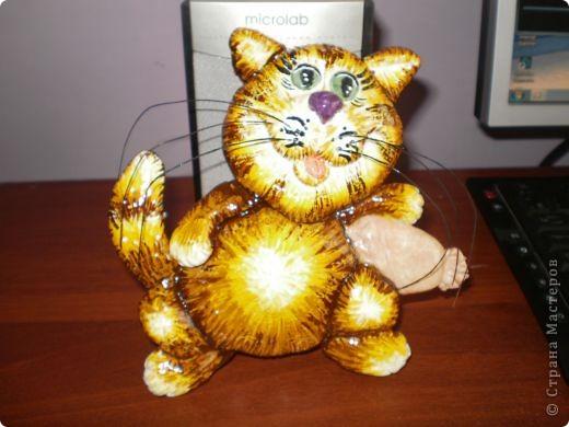 Ну вот он, мой рыжий котик. фото 2