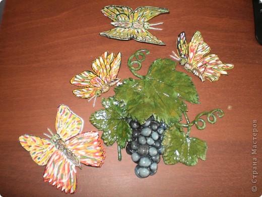 Бабочки и виноград фото 1