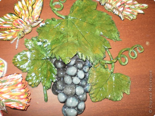 Бабочки и виноград фото 2