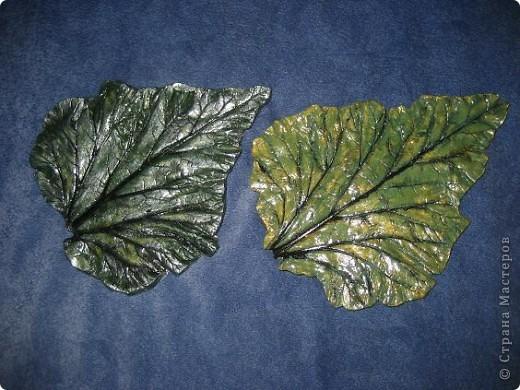 Вот и мне захотелось гипсовых листочков... фото 1