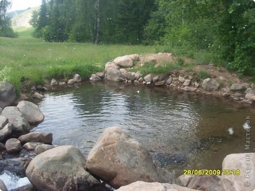 вот и мы по лесу прогулялись))))))))))) фото 9