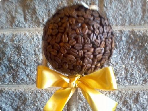 Вот такое у меня получилось кофейное дерево! фото 2