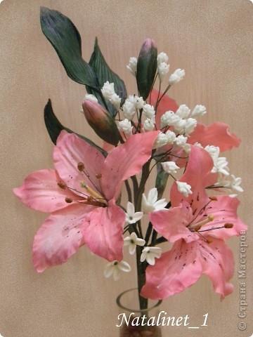 Цветы, напоминающие лилии...