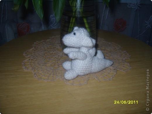 В нашей семье появился маленький белый дракон. Зовут Беляночка фото 2