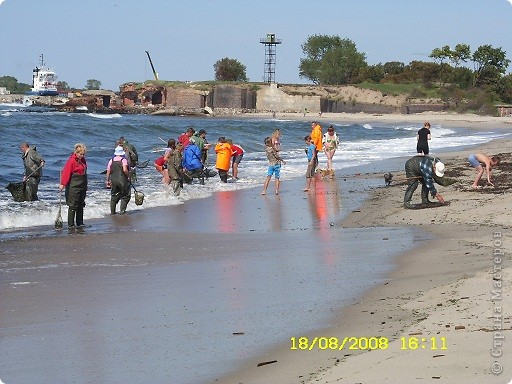Три года назад мы были в гостях на Балтийском море фото 4
