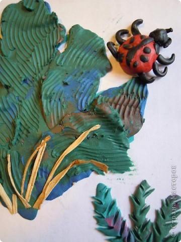Бабочка красавица. фото 19