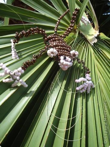 Поделка изделие Поделки для мальчиков Бисероплетение Обезьянка-шалунишка Бисер фото 2.