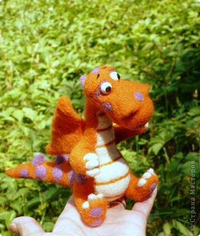 Щенок Джеки,  дракошка и енотик фото 7