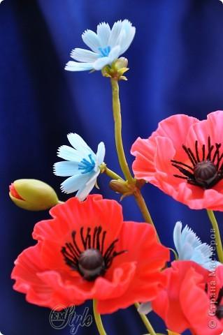 Ура! Ура! Ура! Стоило мне только пожаловаться, что очень туго придумываются и собираются цветы в композиции, как ночью мои полевые цветики сами обосновались в подсвечнике, который я никак не могла решить куда приспособить) Ужасно рада, что не будут лежать мои маки N-ное время в ожидании, да и последний подсолнух пригодился) Ну, а как вышло - снова решать ВАМ, дорогие жители страны и гости моей странички) фото 4