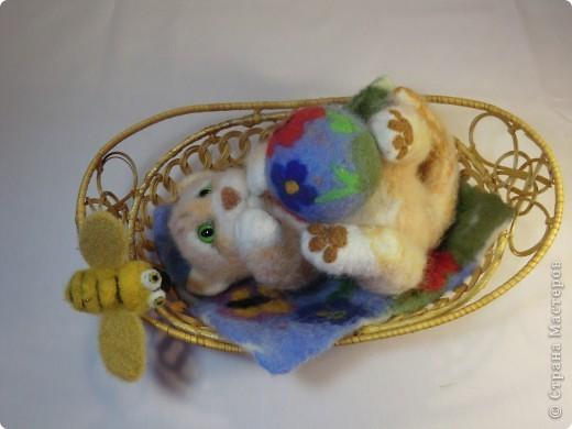 Коврик и мячик для котёнка фото 9