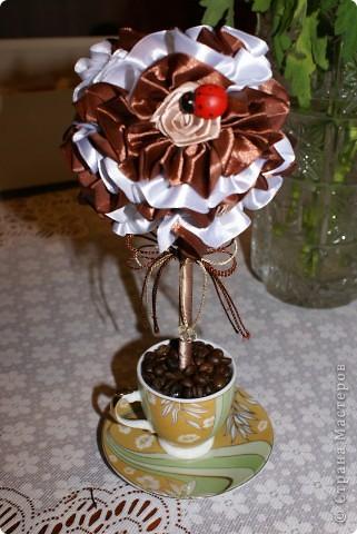 Вот такое мини-деревце я сделала для родителей мужа на годовщину свадьбы (не юбилей), просто как сувенир на кухню. Кофе пить им противопоказано, а запах очень нравится, вот и получилось такое деревце)) фото 4