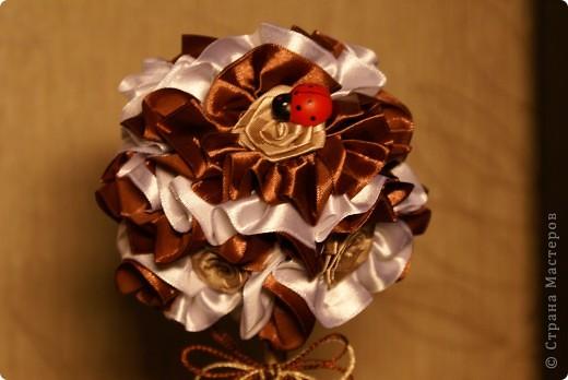 Вот такое мини-деревце я сделала для родителей мужа на годовщину свадьбы (не юбилей), просто как сувенир на кухню. Кофе пить им противопоказано, а запах очень нравится, вот и получилось такое деревце)) фото 2