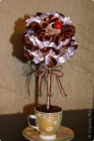Вот такое мини-деревце я сделала для родителей мужа на годовщину свадьбы (не юбилей), просто как сувенир на кухню. Кофе пить им противопоказано, а запах очень нравится, вот и получилось такое деревце)) фото 1