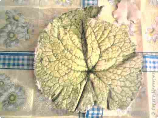 Это мой первый гипсовый листочек. Подскажите какими красками его лучше покрыть чтоб выглядел более натуральным. Материал - гипс. фото 2
