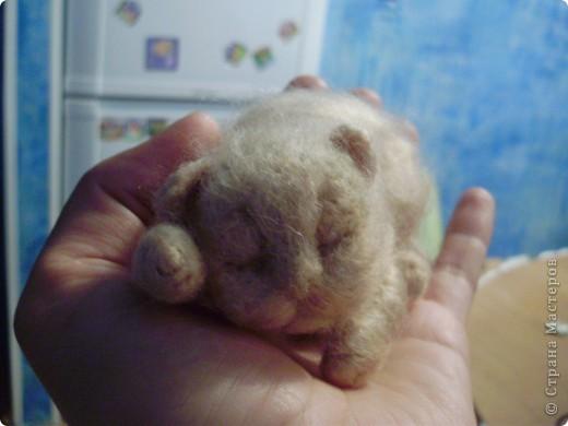 Малыш спит фото 3