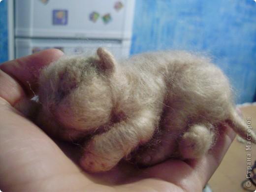 Малыш спит фото 2