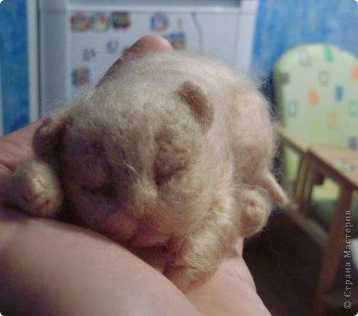 Малыш спит фото 1