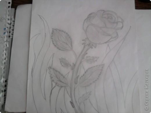 Нашла рисунки 4-летней давности (мне было 12 лет) и решила показать вам... Надеюсь негативной критики не будет, всё-таки почти детские рисунки)  Это роза... фото 1