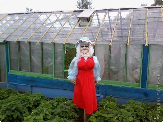 ну вот и выехала наша дама в огород,ростиком она 180. фото 1