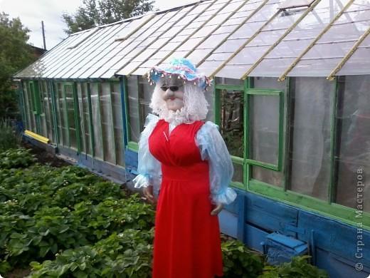 ну вот и выехала наша дама в огород,ростиком она 180. фото 2