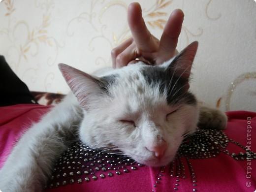 он спокойно спал..... фото 5